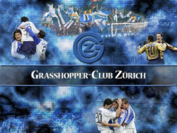 Grasshoppers 11