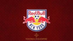 New York Red Bulls 10