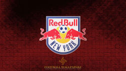 New York Red Bulls 11