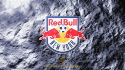 New York Red Bulls 12