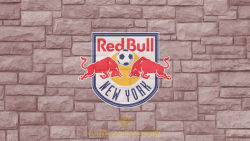 New York Red Bulls 14