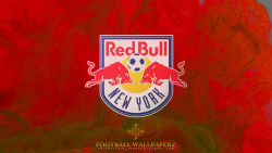 New York Red Bulls 15