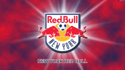 New York Red Bulls 17