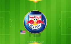 New York Red Bulls 18