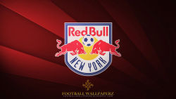 New York Red Bulls 5