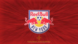 New York Red Bulls 6