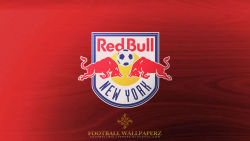 New York Red Bulls 7